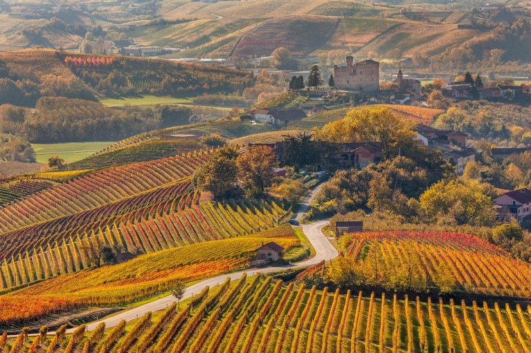 vineyards_in_piedmont_autumn_in_northern_italy